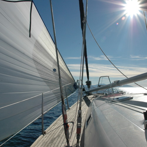 daily charter